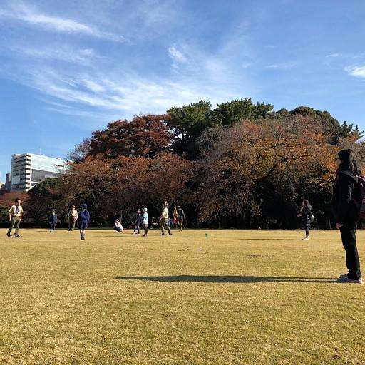 פעולה של הצופים המקומיים בפארק Shinjuku-Gyoen