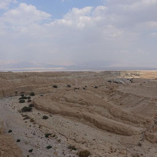 זכינו במדבר. נחל צאלים.