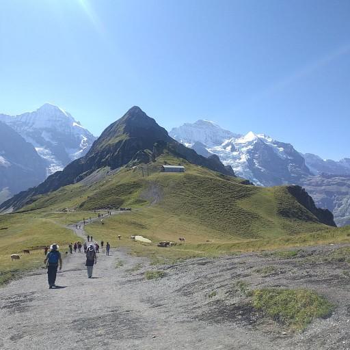 לכיוון Kleine Scheidegg
