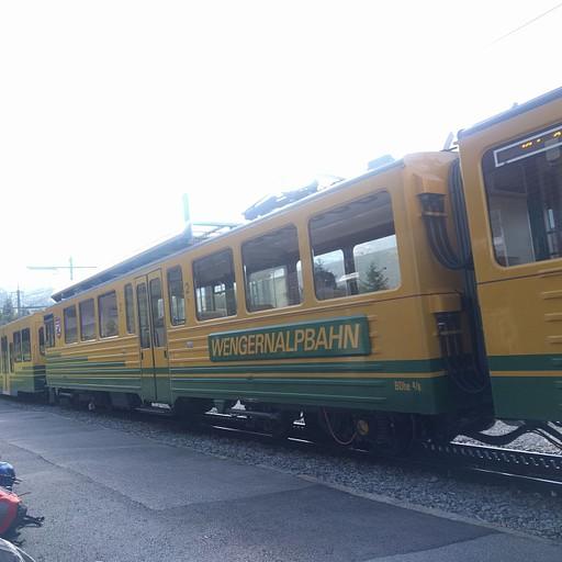 הרכבת חזרה לגרינדלוואלד