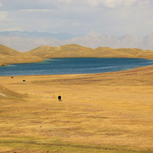 האגם הנעלם (אחד מיני רבים)