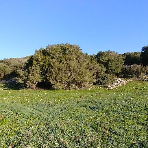 הנוף ליד חורבת קנים