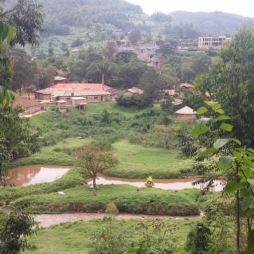הנוף מהמפלים