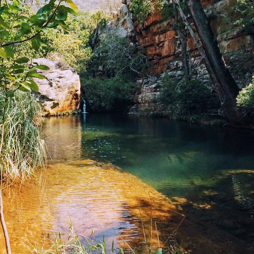 Leopard Trail
