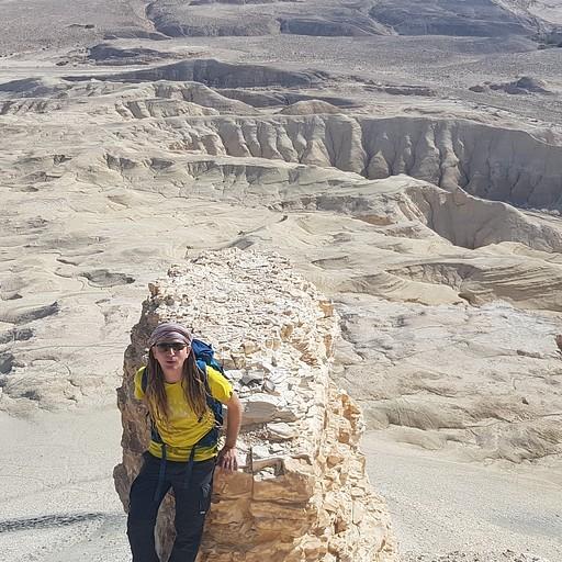 הר צין - הנוף מלמעלה