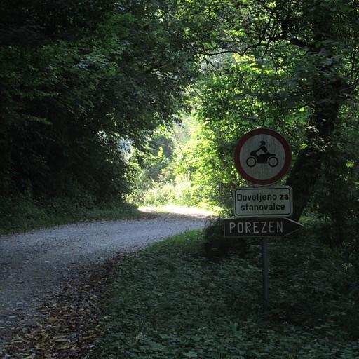 כניסה לתוך היער