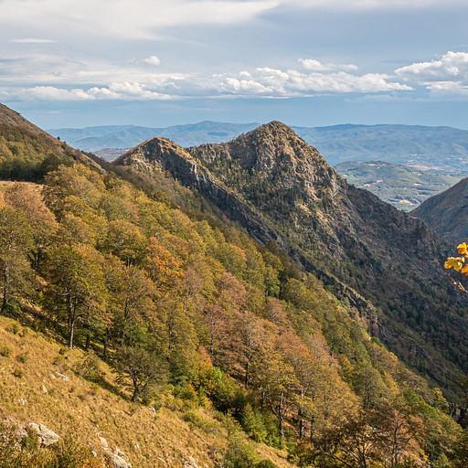 הנוף בדרך לפסגה