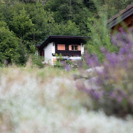 בין כפרים שוויצריים