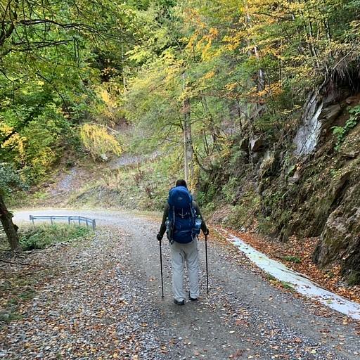 השביל המישורי בתחילת המסלול