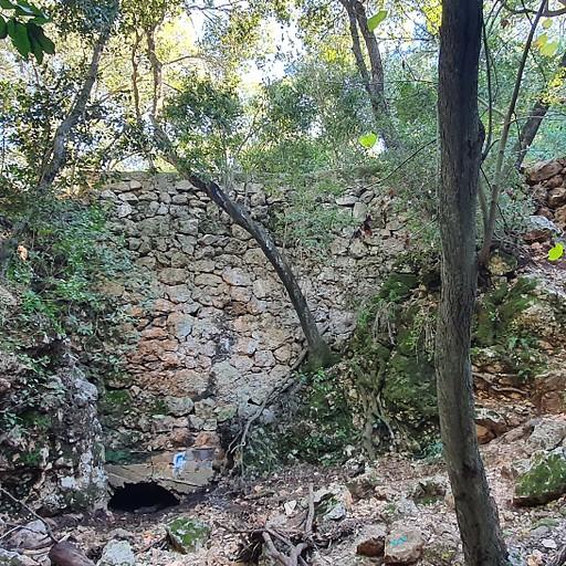 הסכר לפני נקודת הפיצול