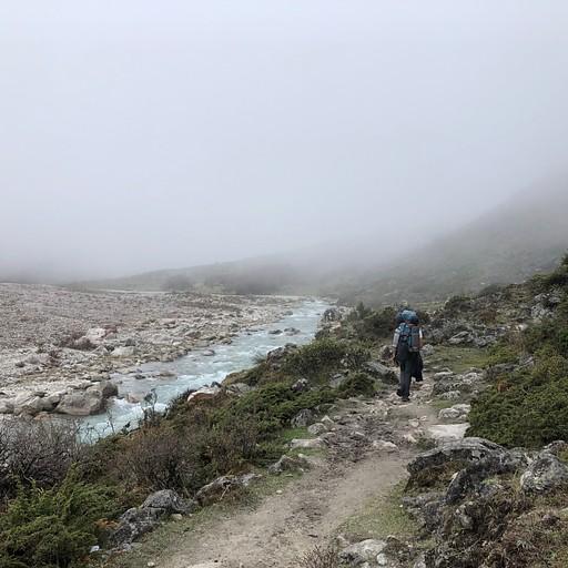 הליכה בערפל