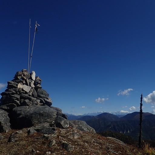 הרוג'ום הענק בתצפית 360 לאחר היציאה מהיער