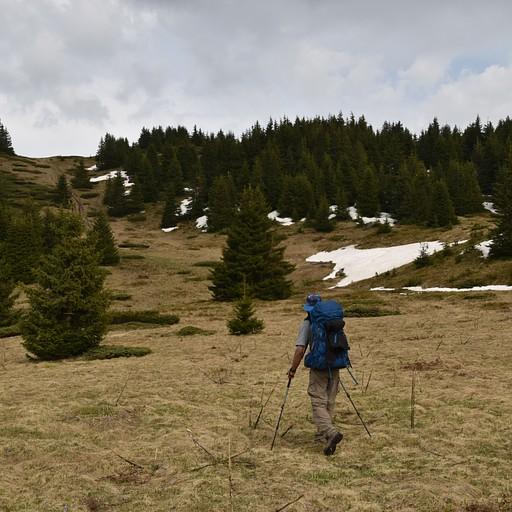 באזור הגובה 1800 מטר