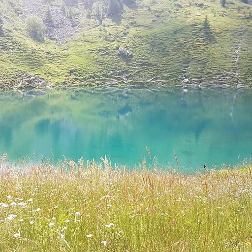 האגם שקרא לי להכנס ועמדתי בפיתוי :)