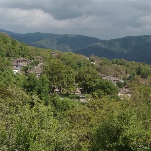 צפולובו
