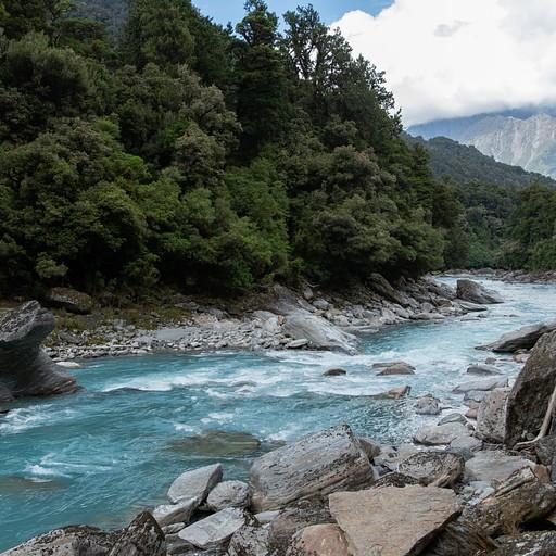 הנוף מהדרך - הליכה לצד הנהר