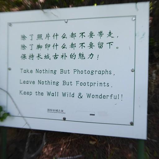 השלטים ביער בדרך לחומה יודעים מה באמת חשוב