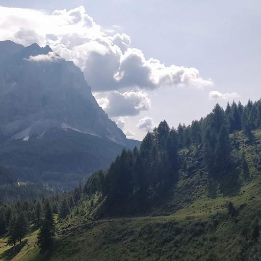 הר פלמו