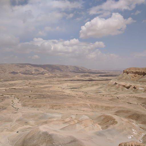 הנוף הנשקף מהרכס הדרומי של נחל צין