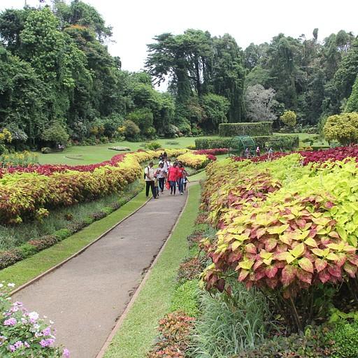 Royal Botanic Gardens 1