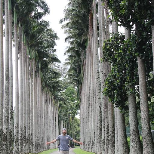 Royal Botanic Gardens 2