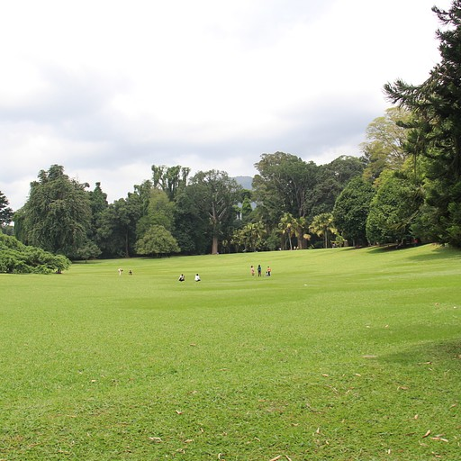 Royal Botanic Gardens 4
