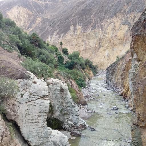 נהר קולקה