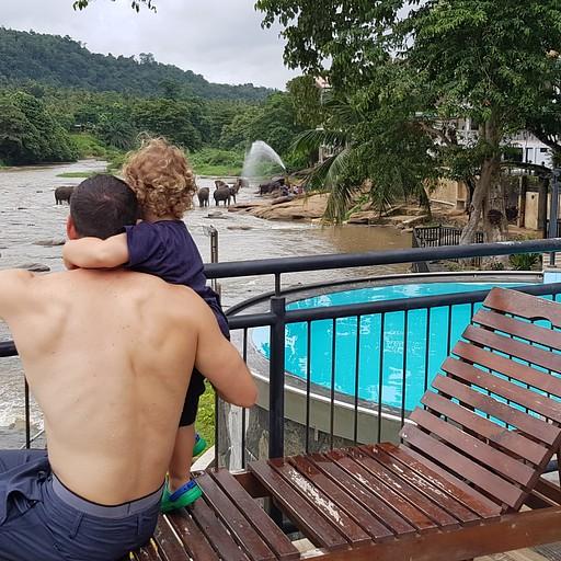 הבריכה מהמלון והנוף