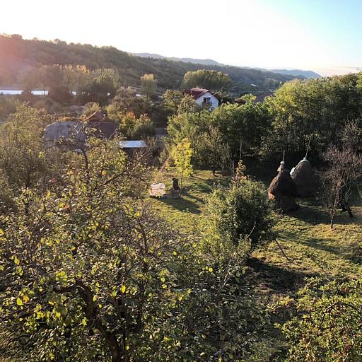 נוף מחצר ביתינו