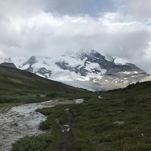 מבט אחורה בחלק המתון של העליה, לעבר Robson glacier ו-Mt. Robson.