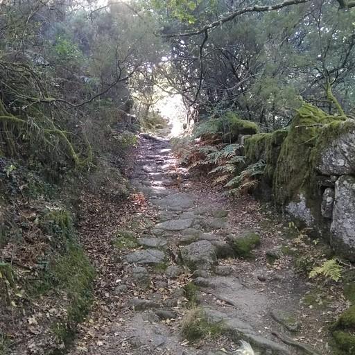 הדרך הרומית מעל האגם