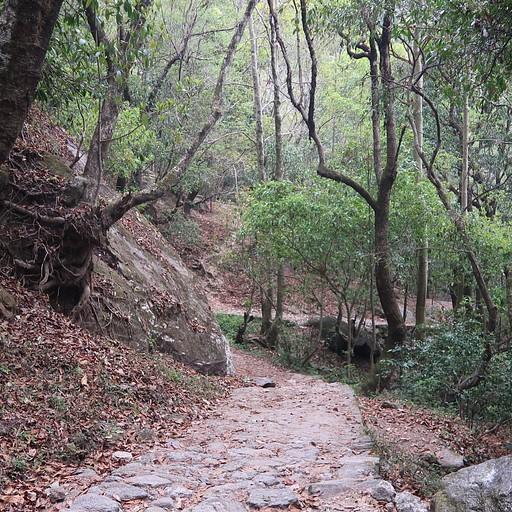שמורת הטבע shivapuri