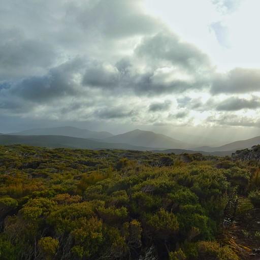 הנוף מההליכה על ההר