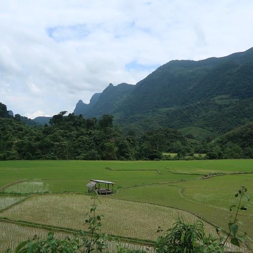 הנוף בדרך לכפר ban na