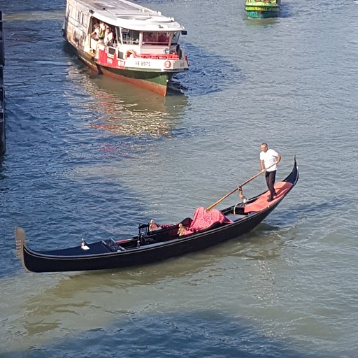 ונציה המקסימה