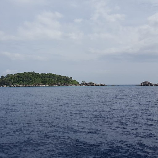 הנוף בהפלגה