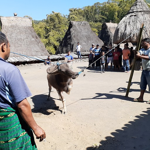 bena traditional village - לפני השחיטה