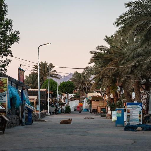 הטיילת של דהאב עם עלות השחר