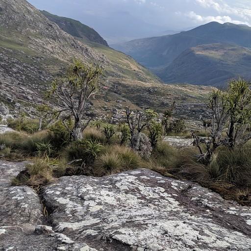 נופים של ניו זילנד על המולנג׳י