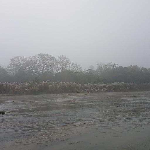 בשייט על הנהר, עיניים של תנינים מציצות