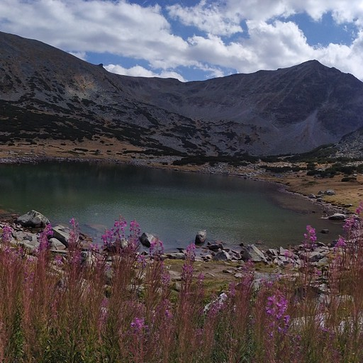 האגם ליד בקתת מוסלה
