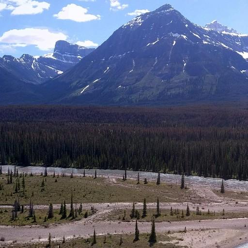 נהר ה Athabasca
