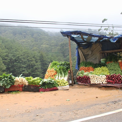 דוכני ירקות בדרף