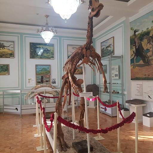 שחזור של שלד דינוזאור במוזיאון הגיאולוגיה