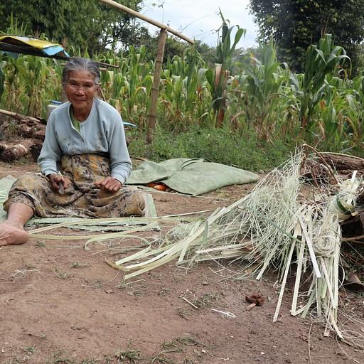 באחד הכפרים, זקנה חותכת ומסדרת במבוקים