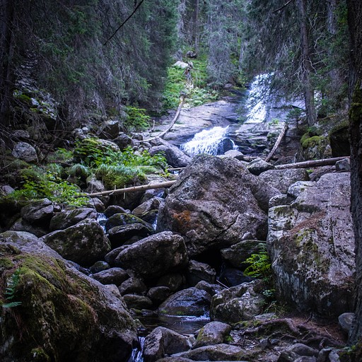 העלייה דרך היער לסקאקאביצ'ה