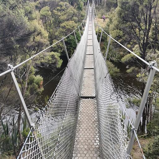 הגשר לפני בקתת Freshwater