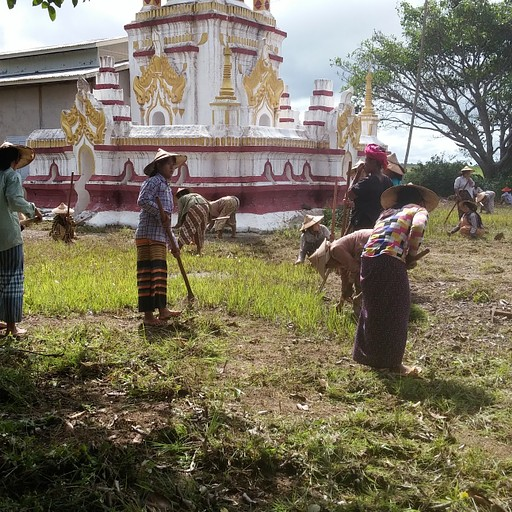 מבצע ניקיון שנתי של מקדש שראינו במהלך הטרק