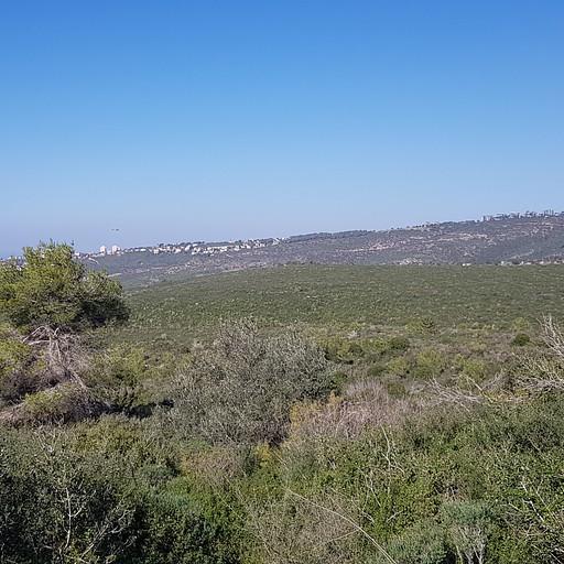 שוויצריה הקטנה - חיפה והאוניברסיטה באופק