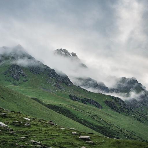 הרים מוריקים וערפל סמיך שנוזל מהם
